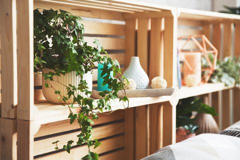 Muebles rústicos hechos con cajas de frutas
